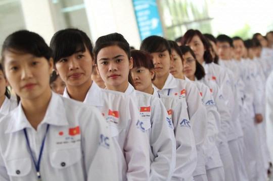 劳务合同期满的越南技能实习生有机会重返日本工作 hinh anh 1