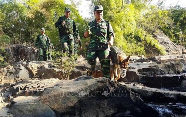 越柬加强协调 圆满完成边境安全保护任务 hinh anh 1