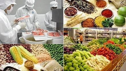 胡志明市在不利条件下大力发展食品加工业发展 hinh anh 2