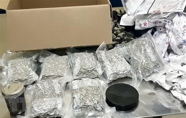 奠边省:逮捕非法运输20公斤毒品进入越南境内的三名老挝籍嫌犯 hinh anh 1