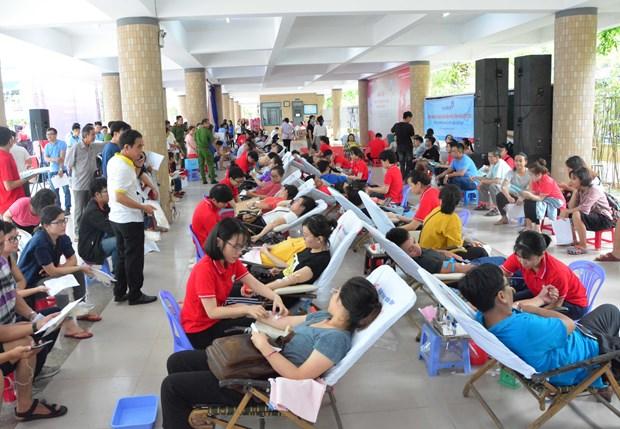 岘港市在开展无偿献血活动中发挥领头羊作用 hinh anh 1