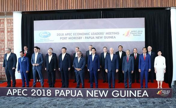 巴布亚新几内亚将为亚太经合组织成员经济体发放电子签证 hinh anh 2