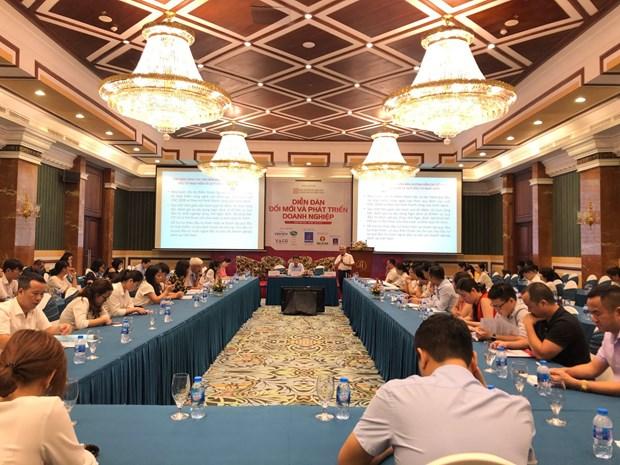 企业创新与发展论坛在河内举行 hinh anh 2