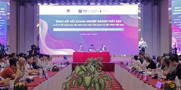 越南安全和可持续虾类生产联盟正式成立 hinh anh 3