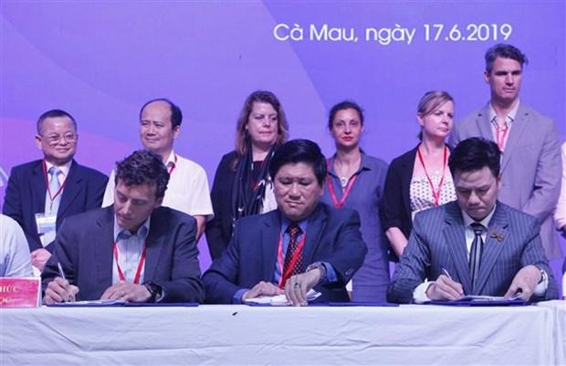 越南安全和可持续虾类生产联盟正式成立 hinh anh 1