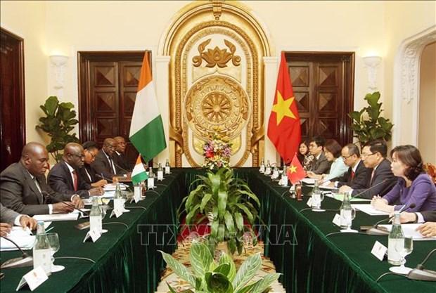 越南与科特迪瓦支持同意加强在多边论坛上的交流与合作 hinh anh 1