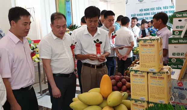 山萝省采取措施促进绿色农产品对中国市场出口 hinh anh 2
