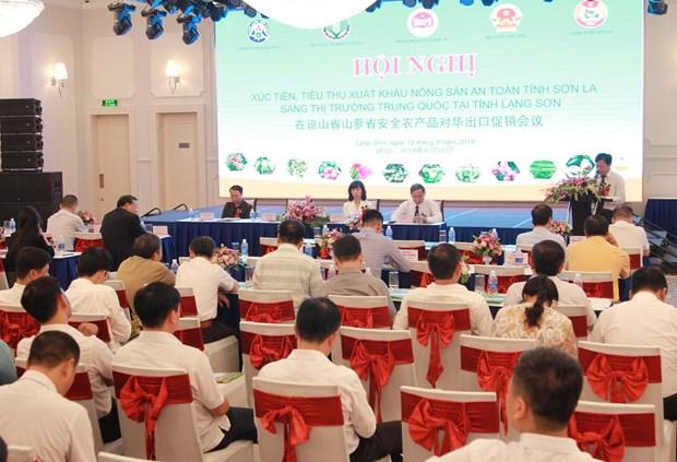 山萝省采取措施促进绿色农产品对中国市场出口 hinh anh 1