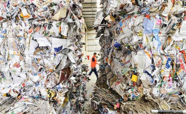 呼吁东南亚国家禁止洋垃圾进口 hinh anh 2