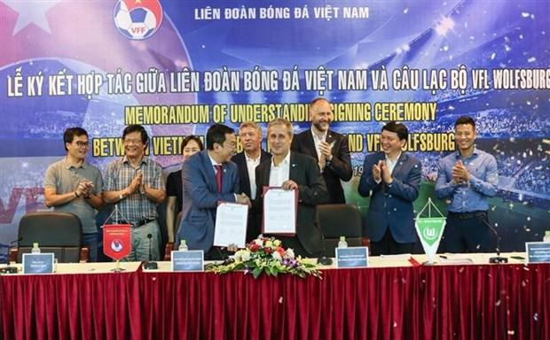 越南与德国展开合作 推动足球发展 hinh anh 1