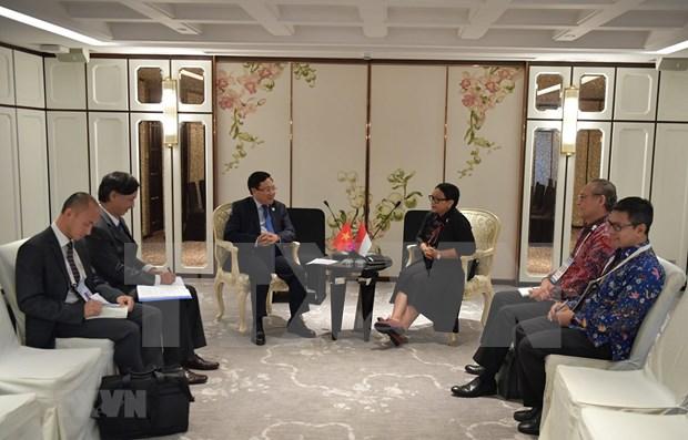 越南与印尼努力推进两国战略伙伴关系走向务实 hinh anh 1