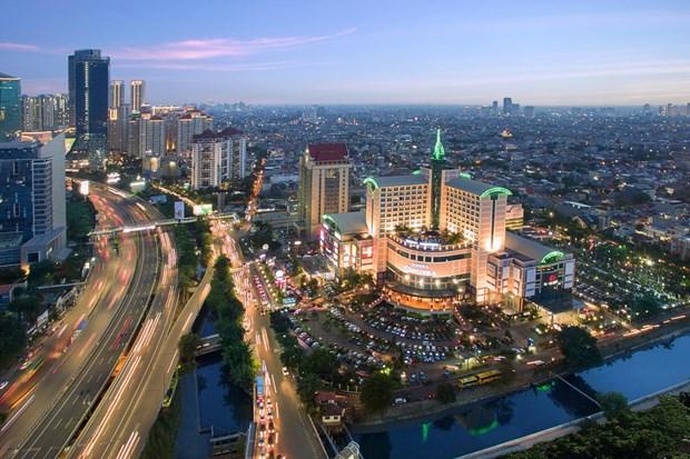 印尼预计推动数项减税政策 加速经济增长 hinh anh 2