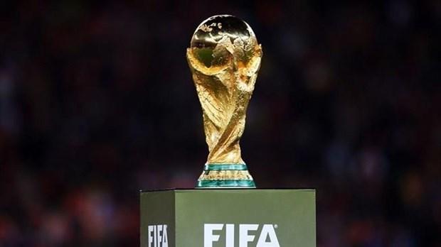东盟10国将联合申办2034年世界杯 hinh anh 1