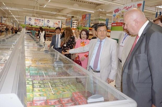 越南企业扩大在捷克的经营与投资业务 hinh anh 2