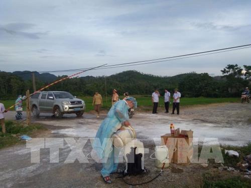 越南全国60个省市出现非洲猪瘟疫情 hinh anh 1