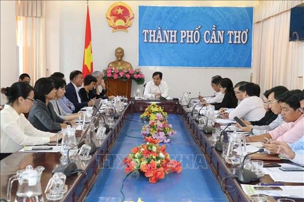 日本国际协力机构组团赴越南芹苴市开展农业考察活动 hinh anh 1