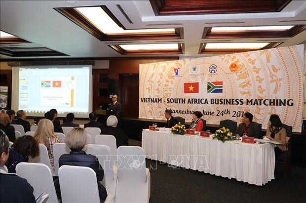 越南企业赴南非寻求出口机会 hinh anh 2
