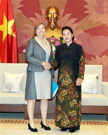 越南国会主席阮氏金银会见联合国儿童基金会驻越首席代表 hinh anh 1