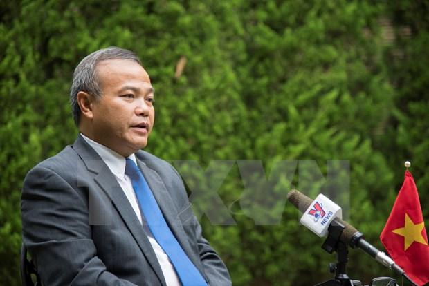 越南驻日本大使:越南将以特邀嘉宾身份积极参与G20峰会 hinh anh 1