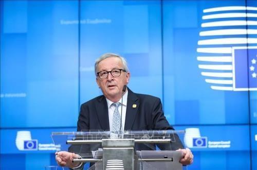 欧盟欢迎各成员国同越南签署自贸协定的决定 hinh anh 1