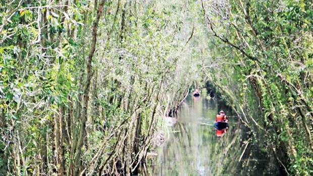 别具一格的朗森湿地保护区 hinh anh 2
