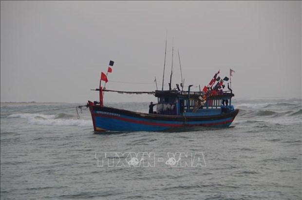 成功营救在黄沙海域遇险的渔民 hinh anh 1