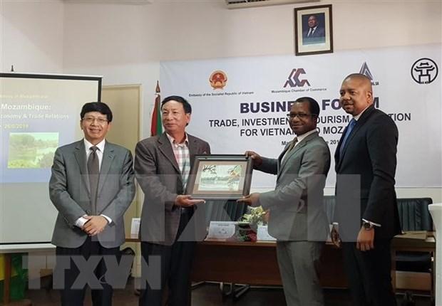 越南与莫桑比克促进贸易投资和旅游的合作 hinh anh 2