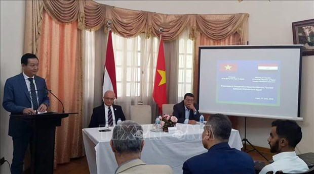 越南和埃及多措并举充分挖掘旅游合作潜力 hinh anh 1