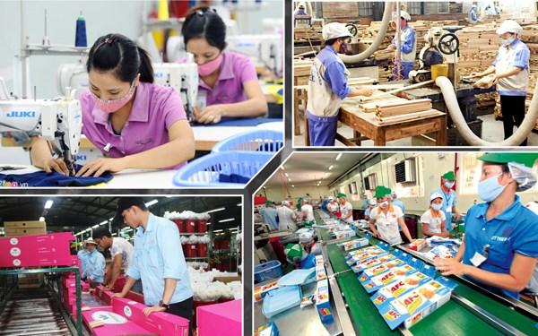 今年上半年全国GDP增长6.67% hinh anh 2