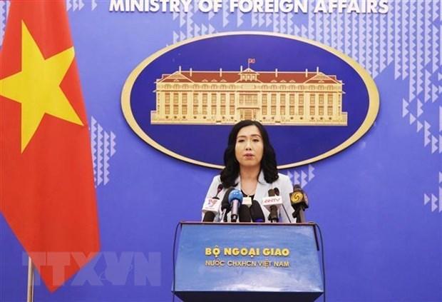 外交部发言人:越南高度重视促进越美全面伙伴关系发展 hinh anh 1