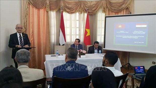 越南和埃及多措并举充分挖掘旅游合作潜力 hinh anh 2