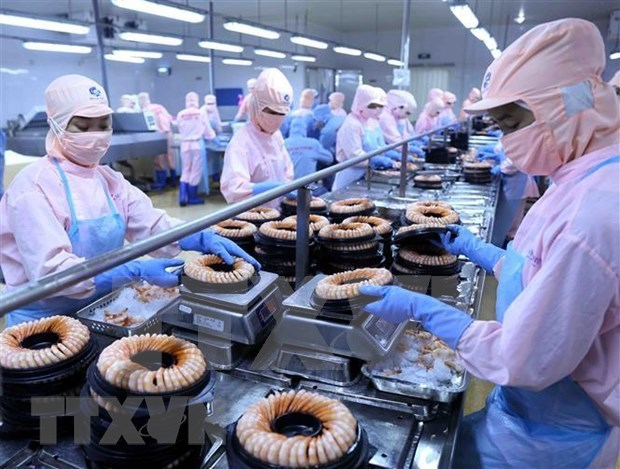 EVFTA将提升越南商品在欧洲市场上的竞争力 hinh anh 2