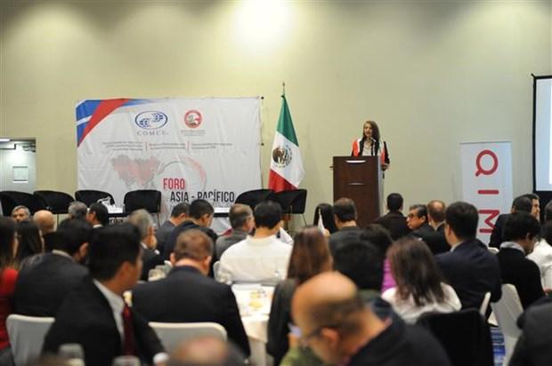 墨西哥重视CPTPP在促进贸易关系多样化战略中的地位 hinh anh 1