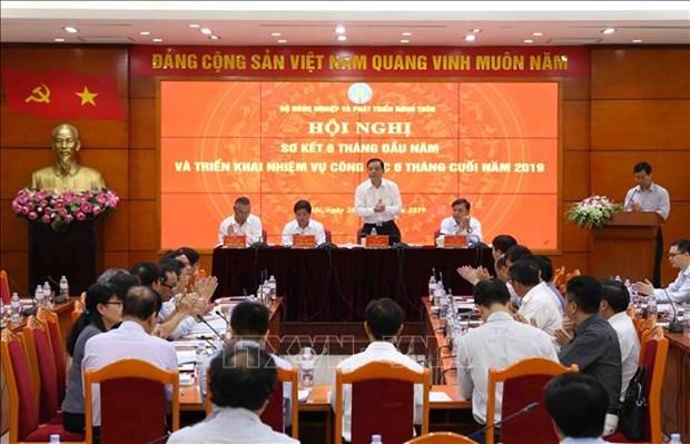 今年上半年越南农业生产增长2.39% hinh anh 1