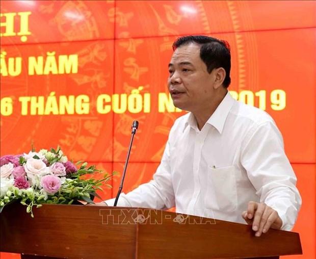 今年上半年越南农业生产增长2.39% hinh anh 2