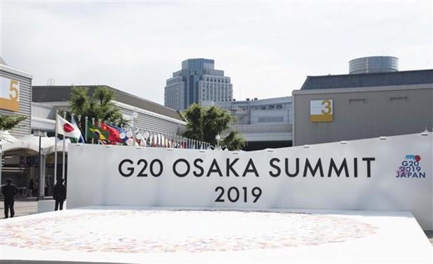 二十国集团领导人第十四次峰会开幕 hinh anh 1
