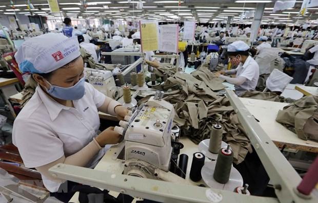 欧盟谈判代表团团长:越南是欧盟企业进军东盟市场的重要门户 hinh anh 1