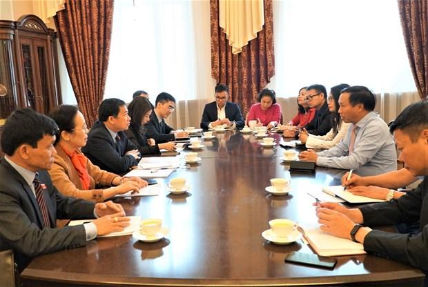 越南国会对外委员会代表团对越俄两国所签署各项国际条约执行情况进行监督 hinh anh 3