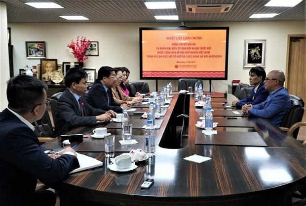越南国会对外委员会代表团对越俄两国所签署各项国际条约执行情况进行监督 hinh anh 1