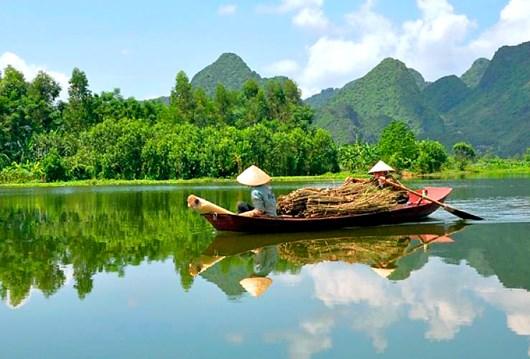 推动合作 努力保护湄公河 hinh anh 1