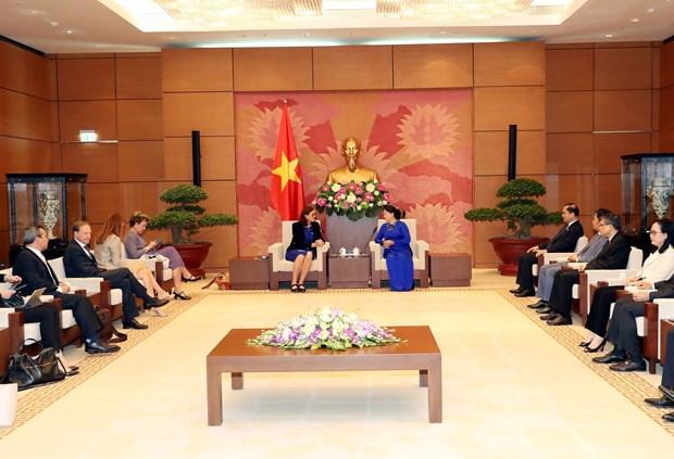 国会主席阮氏金银:为《越南与欧盟自由贸易协定》的生效实施做好准备 hinh anh 2