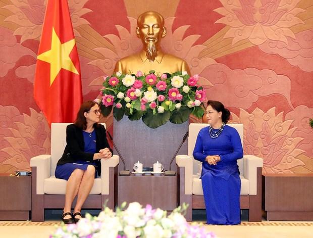 国会主席阮氏金银:为《越南与欧盟自由贸易协定》的生效实施做好准备 hinh anh 1