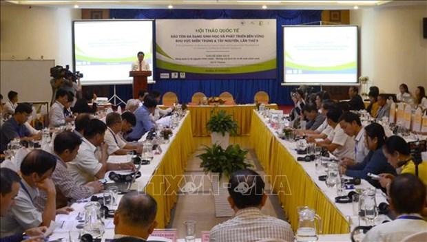 越南中部-西原地区保护生物多样性和可持续发展国际研讨会在岘港市举行 hinh anh 1