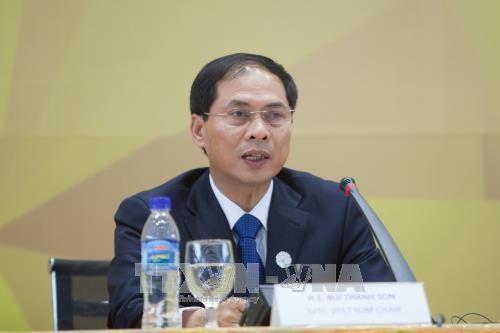 外交部副部长裴青山: 越南为G20峰会做出积极贡献 hinh anh 1