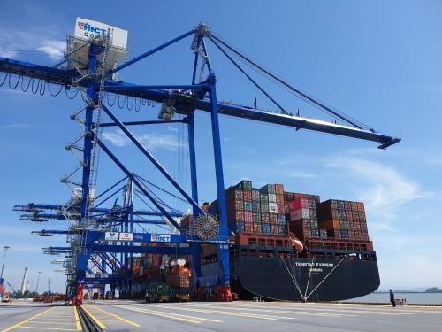 海防市国际集装箱码投运一年后集装箱吞吐量超过18.7万标准箱 hinh anh 1