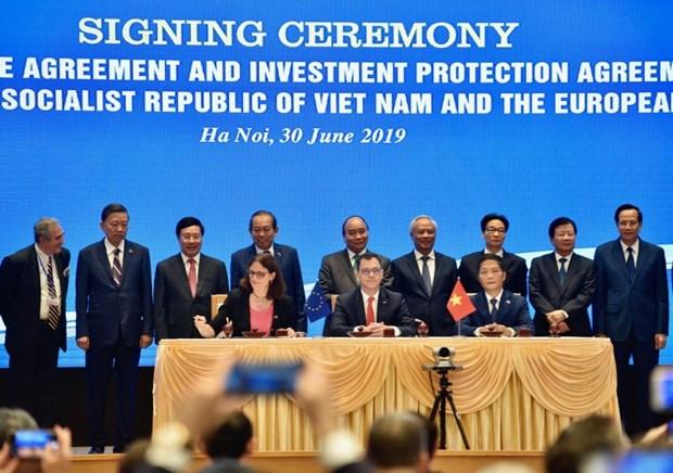 国际劳工组织祝贺越南与欧盟签署自贸协定 hinh anh 1