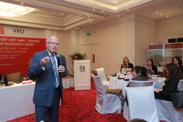 越南企业迎来扩大对加拿大出口的机会 hinh anh 1