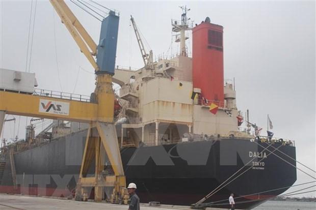 2019年上半年全国港口货物吞吐量同比增长13% hinh anh 1