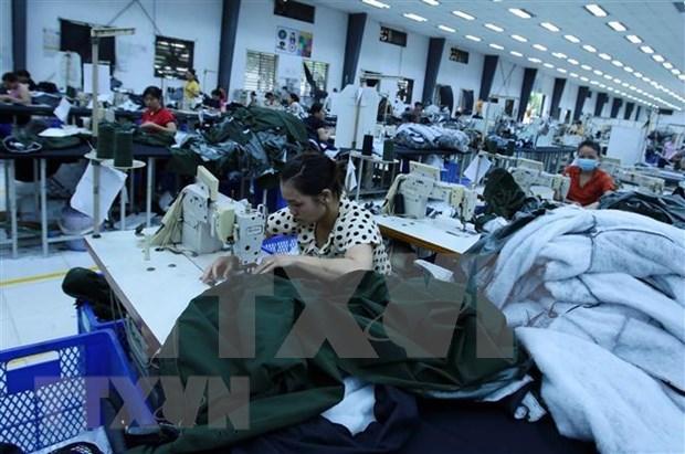 越南纺织品服装有机会扩大在加拿大的市场份额 hinh anh 1