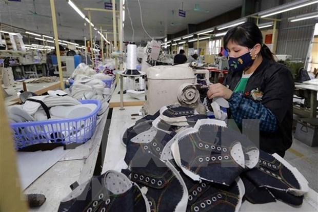 EVFTA:越南皮革鞋业发展的催化剂 hinh anh 2